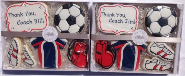 Packaged Soccer Coach Sets 2014