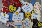 Doctor Cookies by Cheerful Momma's Custom Art Cookies