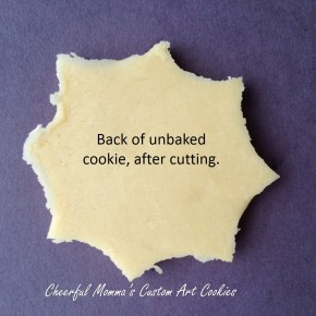 Spider Web Cookie back with text